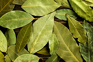 Bay Leaves Spice
